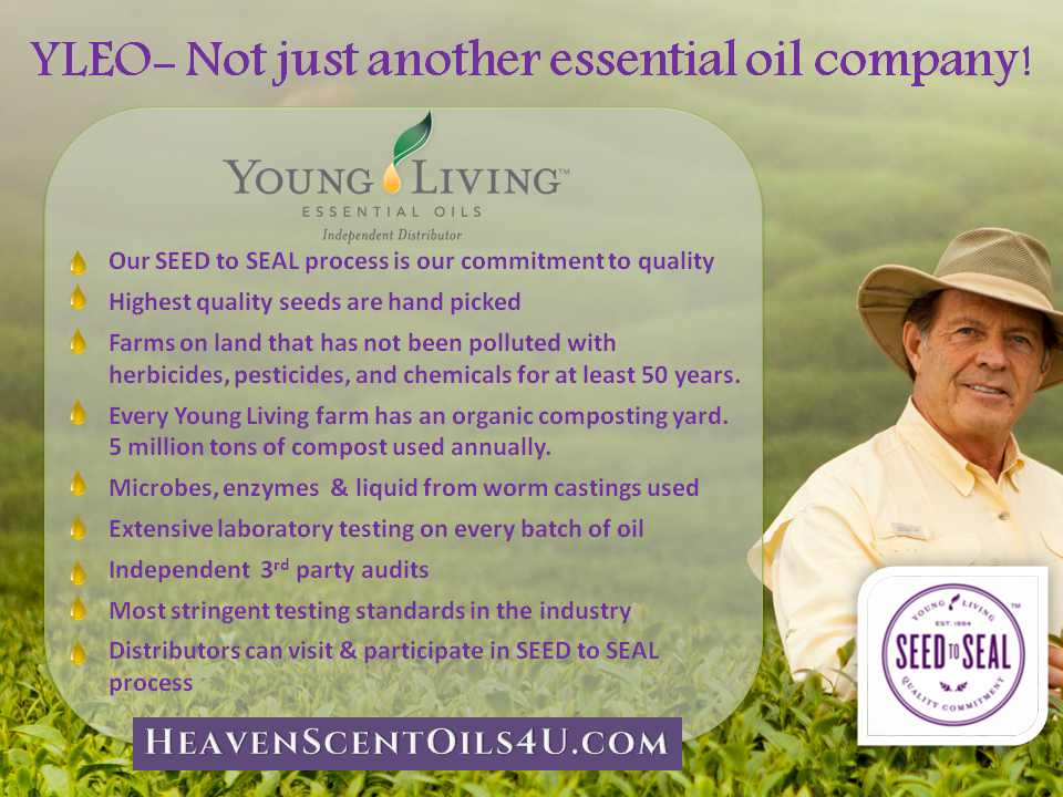 Young Living Vs Other Brands Of Oils