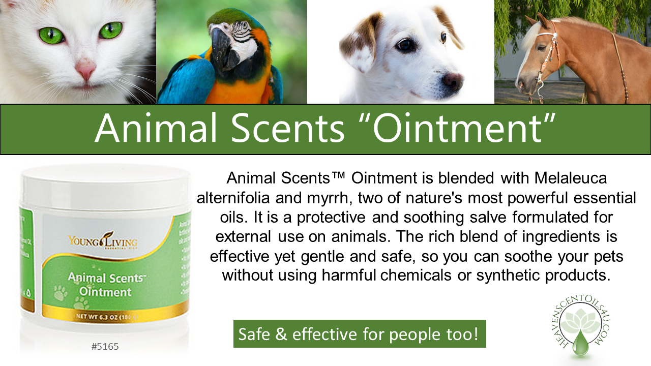 Animal Scents Ointment And Product Line